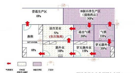 制药厂GMP净化车间设计图