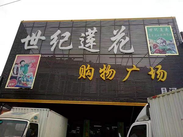 河南省南阳市桐柏县月河镇世纪莲花购物广场商超货架案例