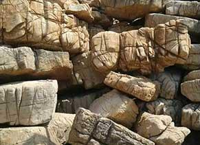 灵璧龟纹石