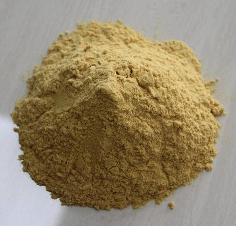 聚合硫酸铁设备