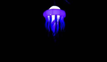 多彩水母D=3米